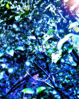 DDON小説用表紙03.jpg